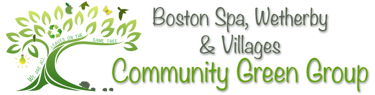 Boston Green Group